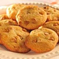 橙色的饼干 制造商