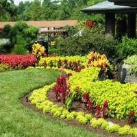 家庭园艺服务 制造商