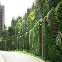 垂直花园景观服务 制造商