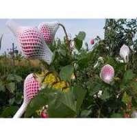 花芽网 制造商