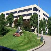 商业园林绿化服务 制造商