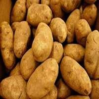 土豆 制造商