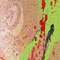 Nova Spray Paints 制造商