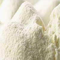 脱脂奶粉 制造商