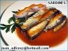 西红柿沙丁鱼沙丁鱼425GRS